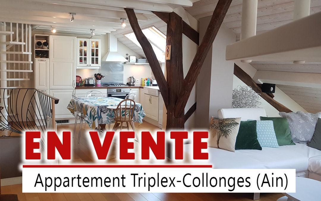Appartement Collonges – Ain